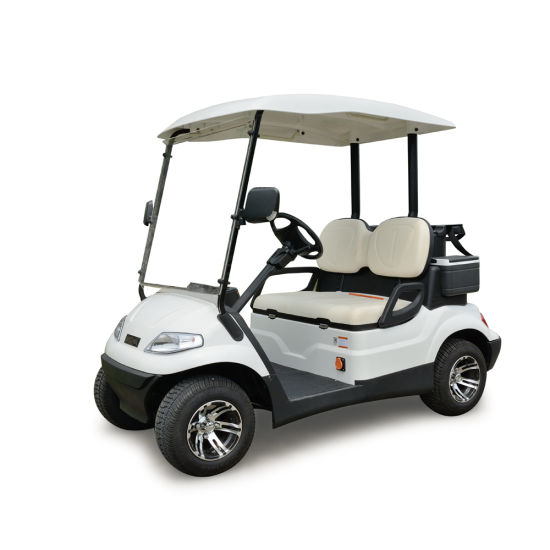 Lvtong Brand 2 Seats Electric Golf Car for Sale