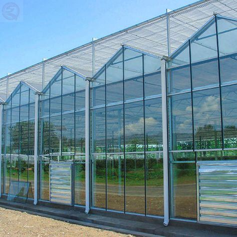 Agricultural Tempered Laminated Commercial Glass Greenhouse Multi Span Hydroponic for Vegetables Flowers Tomato