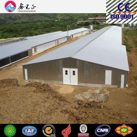 Poultry House, Livestock, Chicken House, Poultry Farm (PCH-9)