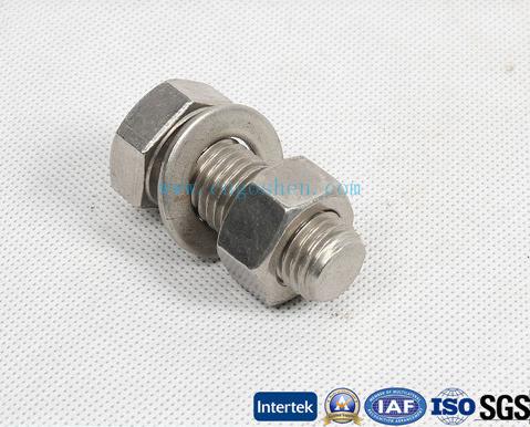 Standard Fastener Stainless Steel Hex Bolt / Flange Bolt / Carriage Bolt