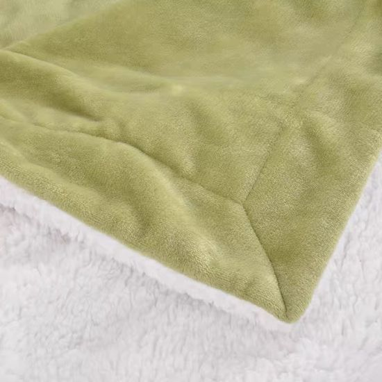 Factory Wholesale Flannel Blanket Quilt Single Student Plush Sheets Double Warm Winter Coral Blanket