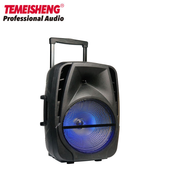 12 Inch Outdoor Portable Rechargeable Party Karaoke Trolley Speaker