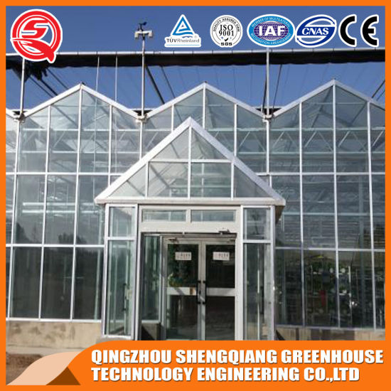 Agriculture Multi Span Glass Hydroponic Green House for Vegetables Planting/Flower Exhibition pictures & photos