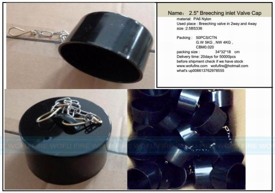 "2.5"" Breeching Inlet Valve Cap pictures & photos"