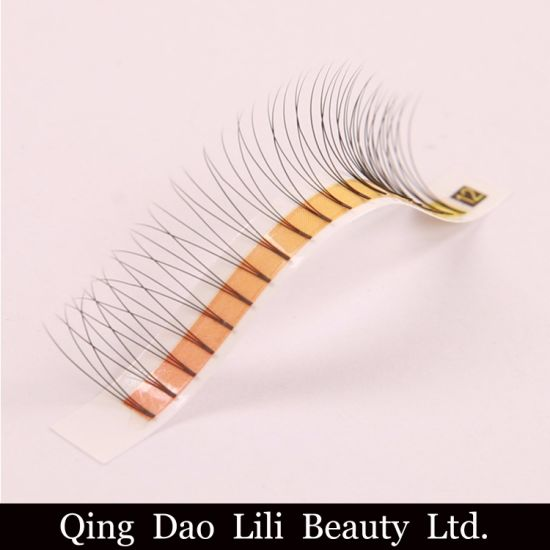 Wholesale Premade Fans 3D 4D 5D 6D 7D Russian Volume Lashes Own Brand  Eyelashes Premade Loose Volume Lashes Eyelash Extensions