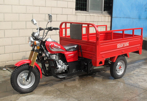 CE EEC 200cc Motor Cargo Three Wheel Motorcycle 3 Wheel Motorcycle