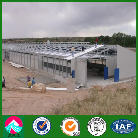 Prefabricated China Low Cost Steel Structure Houltry House pictures & photos