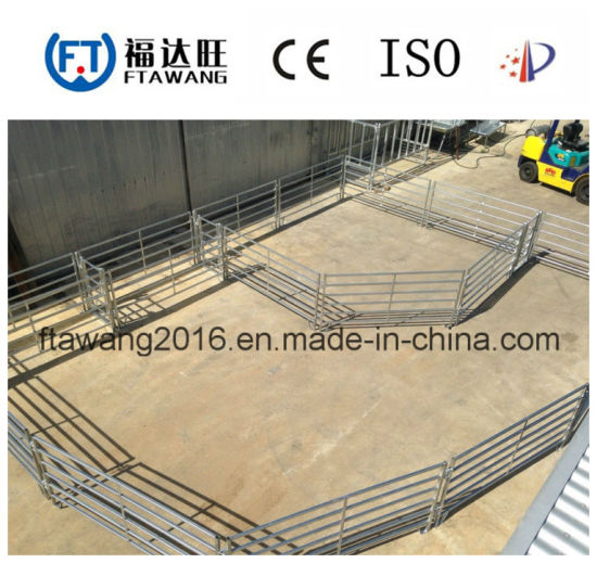 Wholesale Cattle Horse Fence /Wire Mesh Fencing/Fence Panel