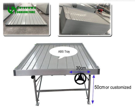China Greenhouse Ebb and Flow Rolling Benches Movable