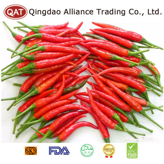 Fresh Chinese Red Chili Wirh High Quality pictures & photos