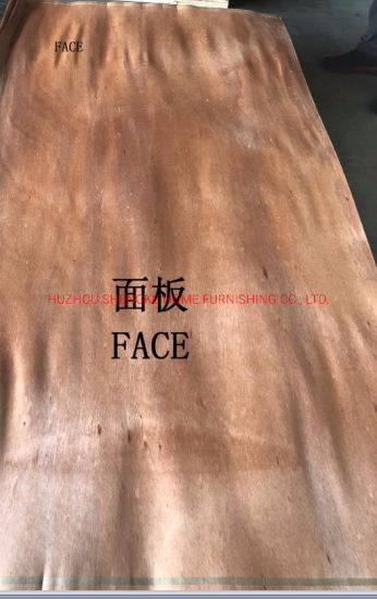 Raw Material for Plywood Chinese Veneer Good Face Grade a B C Fruniture Door Timber