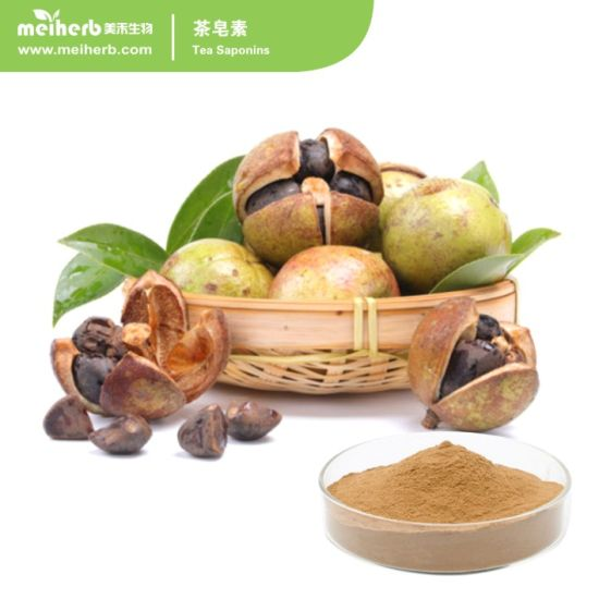 60%~98% Tea Saponin Tea Saponins Extract Factory Price pictures & photos