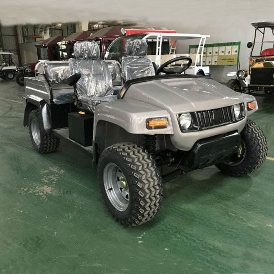 Electric off-Road Vehicle Chinese Electric UTV with Ce Certificate