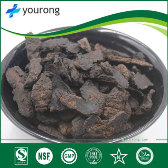 Radix Rehmanni Extract, Traditional Chinese Medicine, Rehmannia Glutinosa Concentrate Powder