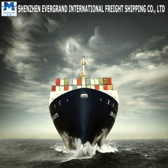 Sea Freight Door to Door From China to Netherlands pictures & photos