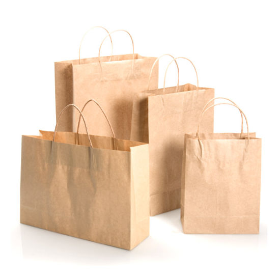 Free Sample Brown Paper Bag with Custom Logo Wholesale pictures & photos