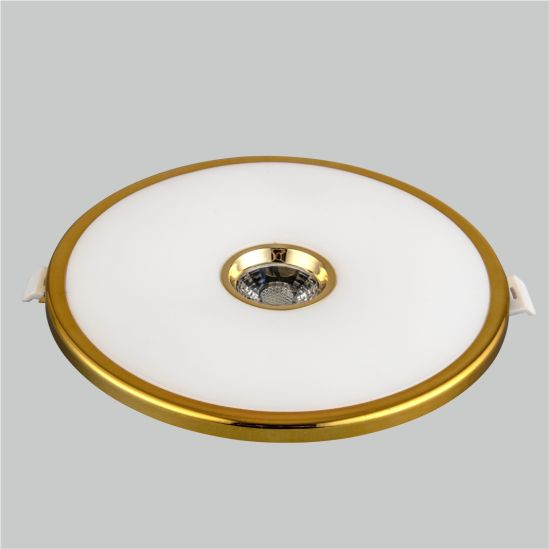 LED Panel Light Round Inside 3+2W 6+3W 12+4W 18+6W Ceiling Lamp Manufacturer Price Factory Golden The New Panel Light