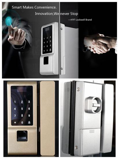 China fingerprint smart glass door lock china fingerprint locks fingerprint smart glass door lock planetlyrics Gallery