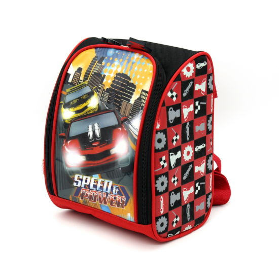 Lightweight Large Capacity 600d Printed Polyester Insulated Cooler Bag, Picnic Bag