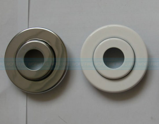 Double Escutcheon Plate pictures & photos