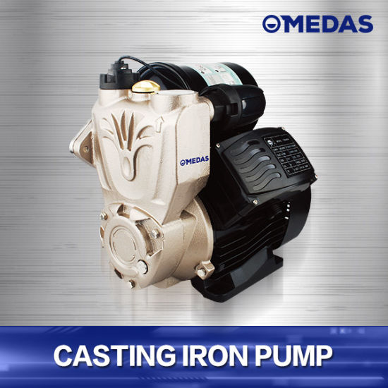 Broader Scope of Application Casting Iron Pump pictures & photos