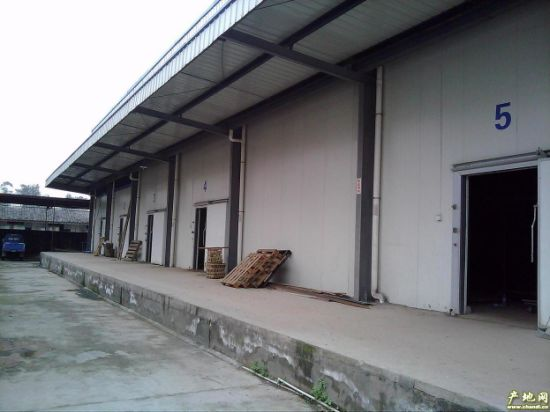 Walk in Meat and Fish Processing Cold Storage 10 Ton