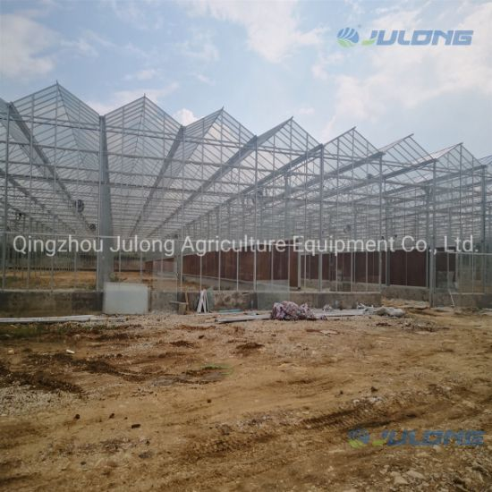 Big Manufacture Commercial Greenhouse Glass Venlo Greenhouses From China