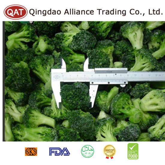 Frozen Broccoli with Competitive Price