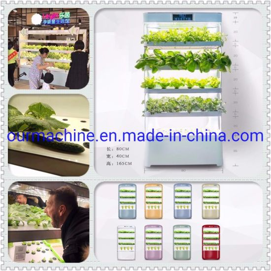 Hydroponic System Indoor Garden Cabinet Box Grow Kit Soilless Culture