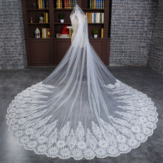 Elegant Lace Big Tulle Veil Wedding Bridal Accessories Ts5506