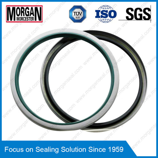 China Oil Seal Cross Reference/Oil Seal Interchange/Custom Large ...