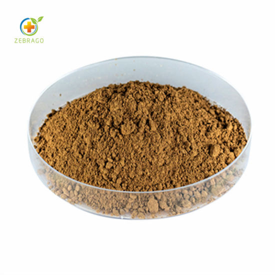 Top Quality Momordica Charantia Extract Powder Polysaccharide pictures & photos