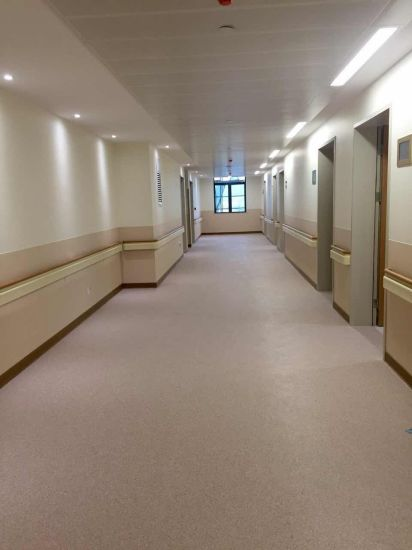 Hospital PVC Elderlying Using Non-Barrier Handrail Manufacture with Certificates pictures & photos