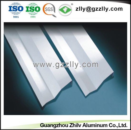 Aluminum False Vertical Style Screen Ceiling for Indoor Decoration pictures & photos