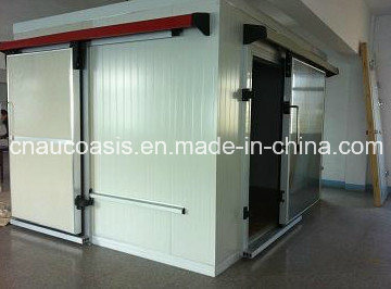 Cold Storage Room for Meat and Fish Indoor/Outdoor Use