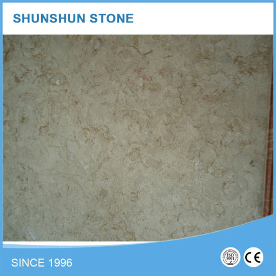 Shell Reef Beige Marble Slabs (high quality, good selling) pictures & photos