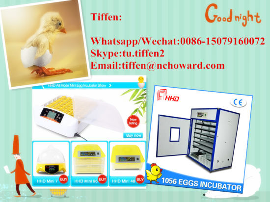 Hot Sale Hhd Automatic Chicken Egg Incubator for Sale Yz-32s pictures & photos