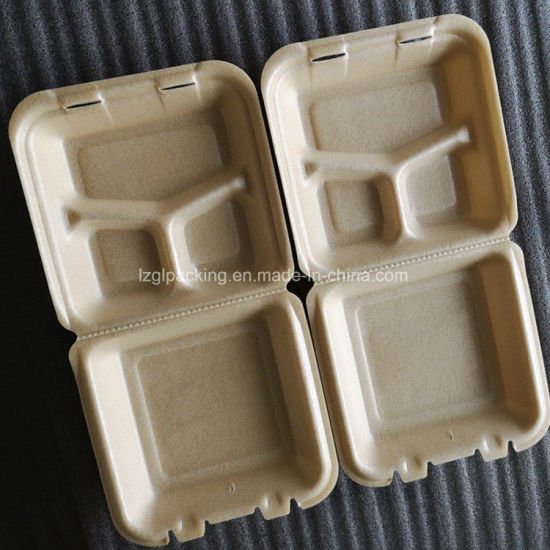 Biodegradable to Go Food PLA Corn Starch Containers for Restaurant Use