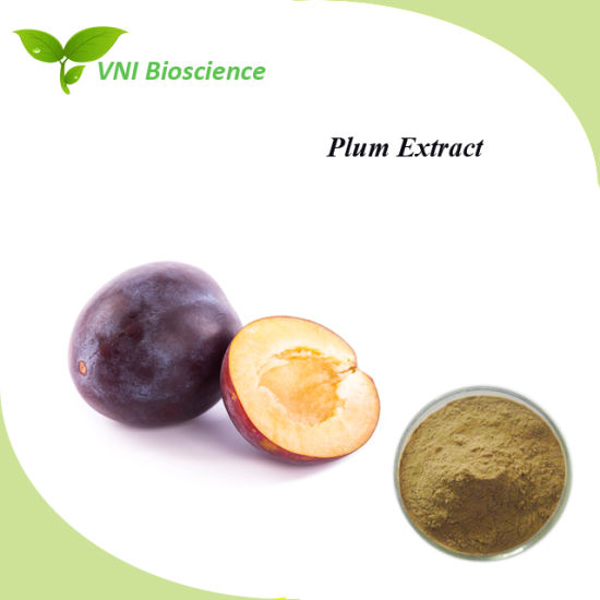 ISO Certified 100% Natural Plum Extract pictures & photos