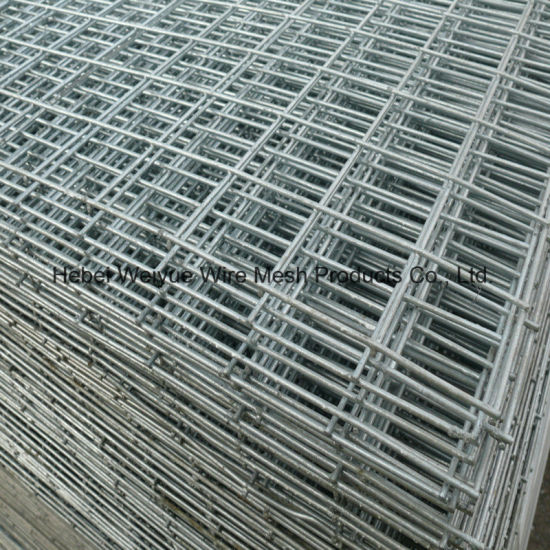 China High Quality PVC Coated/Galvanized Welded Wire Mesh Panel ...