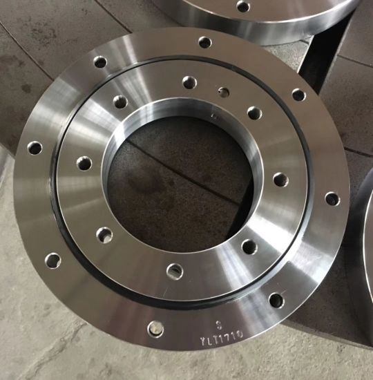 SD. 1166.20.00. B Slewing Bearing/Slewing Ring/Turntable Bearing pictures & photos