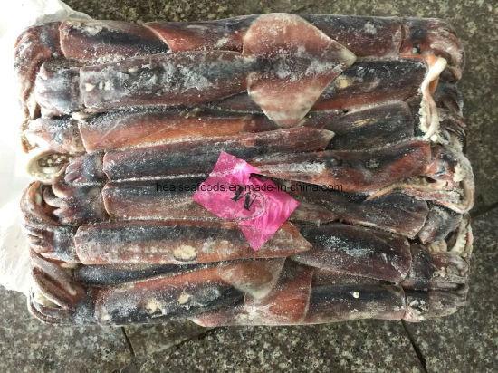 Jigger Catching Sea Frozen Illex Squid