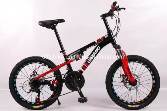 China 20inch Steel Suspension Frame MTB Bike, Disc Brake, Shimano ...