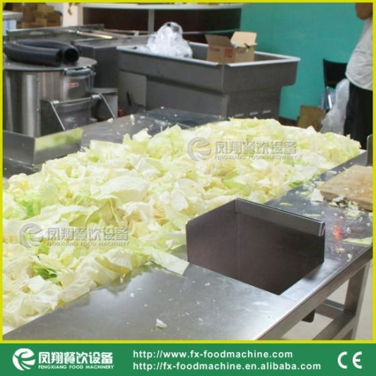 Gd-586 Large Scale Cabbage Lettuce Spinach Vegetable Cutting Slicing Shredding Chopping Machine pictures & photos