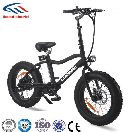 Popular Sale Folding Electric Bike E-Bicycle Lmtdf-23L-2