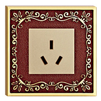 Brass Faceplate Wall Power Point with Classic Patterns