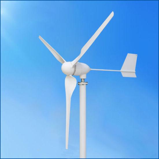 Wind Generaor Manufacturer 1000W 24V/48V Wind Generator Turbine/ Power Generator Price
