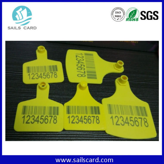 Yellow Animal Ear Tag for Cattle Management pictures & photos