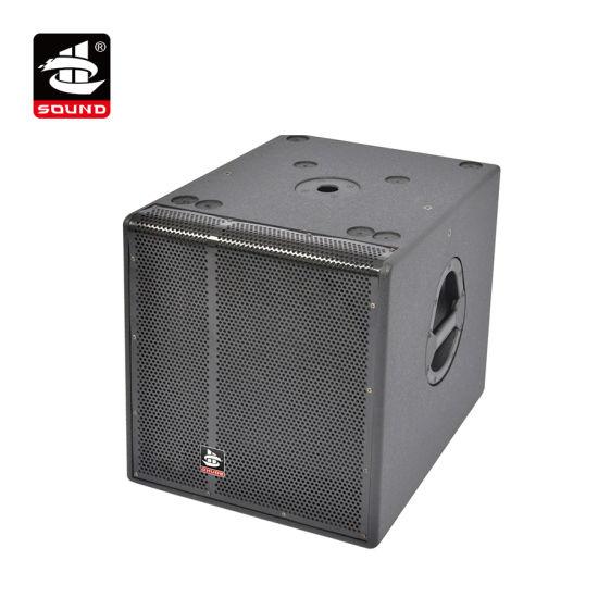 15 Inch 2400W Big Bass Subwoofer Box (Ws-15s)