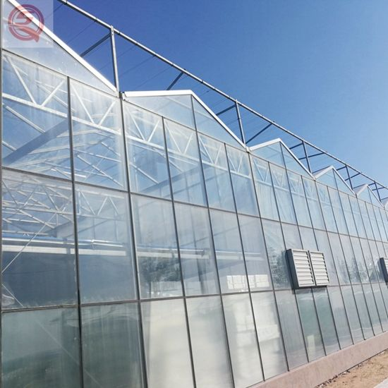 Multi-Span UV Coating Polycarbonate/PC Board Tunnel Hydroponics Agriculture/Commercial Greenhouse